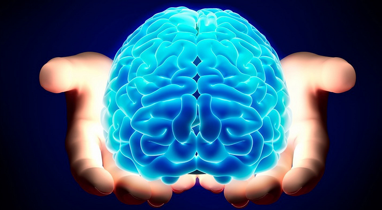 psicoterapia cervello